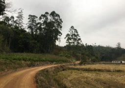 Terreno Rural 33 há ilse Grande Ascurra